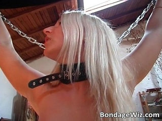 Hot tied blondes like kinky sex and one